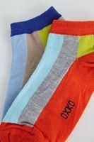 Bayan Çok Renkli Kısa Çizgili Çorap