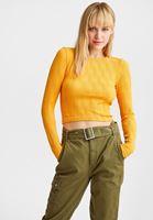 Women Orange Textured Seamless Blouse
